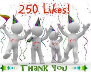 250 Facebike Likes on Our Social Media Channel